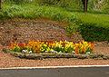 Anneux Fleurs01.jpg