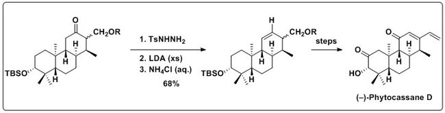 Use of the Shapiro reaction in the synthesis of (–)-phytocassane D
