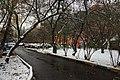 Around Moscow (31640321782).jpg