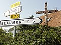 Assé-le-Riboul (Sarthe) croix D75-D162.jpg