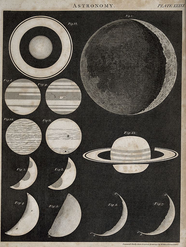 Moon Chart: Astronomy; a diagram of the phases of the moon and the ring ,Chart