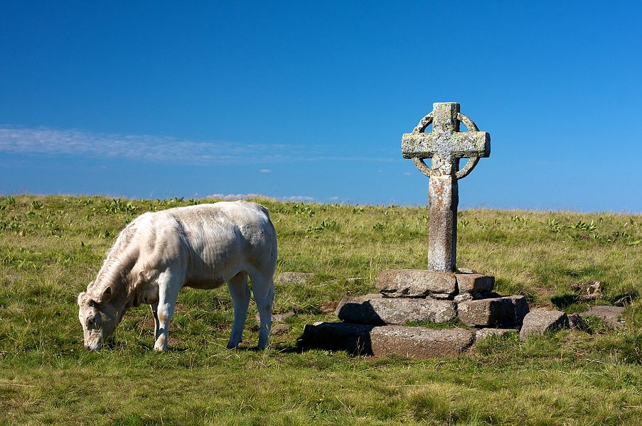 La croix de la Rode sur l'Aubrac