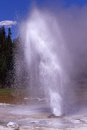 Aurum Geyser in eruption.