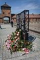 Auschwitz - panoramio (36).jpg