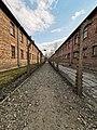 Auschwitz 4.jpg