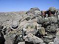Australian SOTG sniper team June 2010.jpg