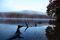 Autumn-mountain-lake-tree-reflections - West Virginia - ForestWander.jpg