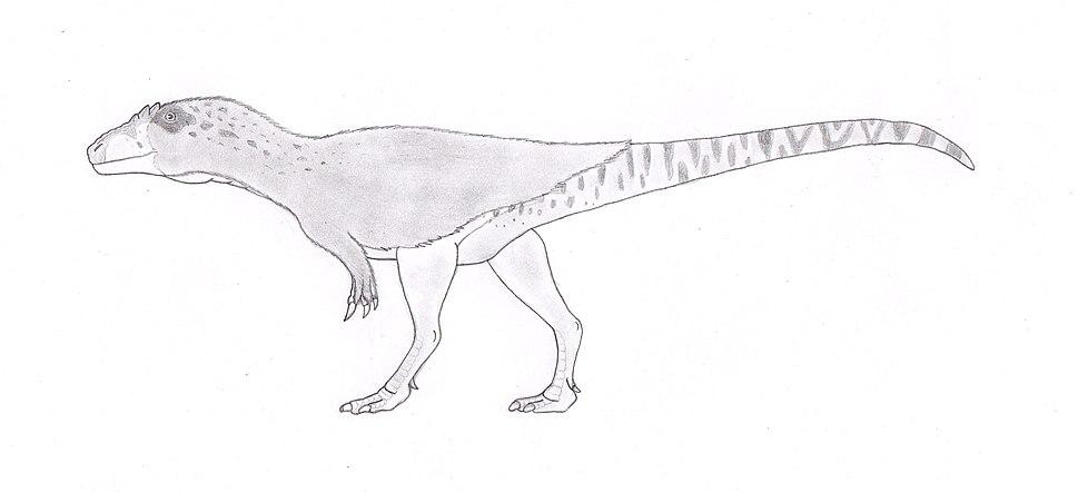 Bahariasaurus ingens, like megaraptora