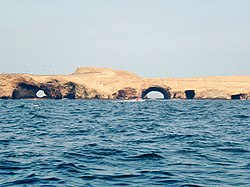 Ballestas Islands Pérou 2011 (2).jpg