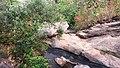 Bamni falls.jpg