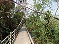 Bang Kobua, Phra Pradaeng District, Samut Prakan, Thailand - panoramio (2).jpg