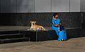 Bangalore, India (38473767).jpg