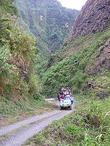 Luzon Rainforest Wikipedia
