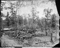 Battlefield of Atlanta, Ga., 1864 - NARA - 528868.tif