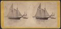 Bay view, from Battery, N.Y. Schooner under way, by E. & H.T. Anthony (Firm).png