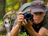 Bence Mate Sri Lanka Cobra.jpg