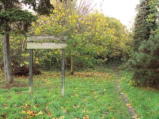 Bidston Hill - DSC04319