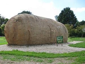 Robertson, New South Wales - The Big Potato