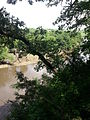 Big Sioux River from the Blood Run Site 4.jpg