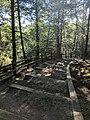 Blackwater Falls State Park WV 28.jpg