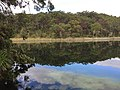 Blue Lake (Kaboora), North Stradbroke Island (Minjerribah), south-east Queensland.jpg
