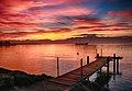 Bord du Lac Léman à Morges.jpg