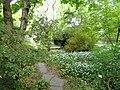 Botanischer Garten Freiburg - DSC06369.jpg