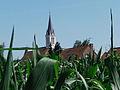 Bouvines.- l'église Saint-Pierre (3).jpg