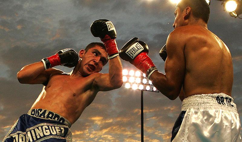 File:Boxing080905.jpg