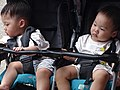 Boys in Stroller - Outside Fuyou Temple - Tamsui - Taipei - Taiwan (47090217944).jpg
