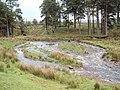 Braided Channels at Marshaw Wyre - geograph.org.uk - 12355.jpg