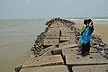 Breakwater - Digha Mohana Beach - East Midnapore 2015-05-02 9371.JPG