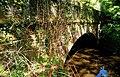 Bridge, Crawfordsburn Country Park - geograph.org.uk - 784721.jpg