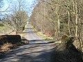 Bridge over Birkey Burn - geograph.org.uk - 1308724.jpg