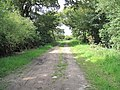 Bridleway and Private Drive - geograph.org.uk - 1433579.jpg