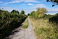 Bridleway near Spark Mill Lane, Beverley (geograph 5099878).jpg
