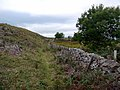 Bridleway north of Humbleton Hill - geograph.org.uk - 1507178.jpg