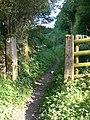 Bridleway to Bradwell - geograph.org.uk - 1485384.jpg