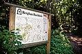 Buchholz Bergbauwanderweg 1.jpg