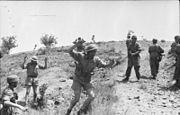 Bundesarchiv Bild 101I-166-0509-16, Kreta, Gefangennahme britischer Soldaten