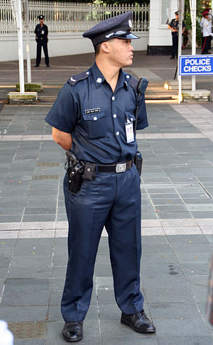 Certis CISCO - CISCO Security auxiliary police officer serving with the Istana Police. The uniforms of the Istana Police were not changed after corporatisation.
