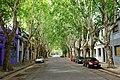 Calle Fray Justo Santa-Maria de Oro, Buenos Aires.jpg