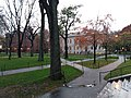 Cambridge, Massachusetts Harvard University,. November, 2019. pic.1w.jpg