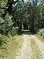 Camminando per la riserva Casalbeltrame.jpg