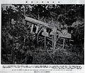 Camouflage by German in Battle of Tsingtao.jpg