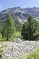 Camping Morteratsch - panoramio (7).jpg