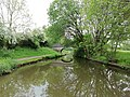 Canal Bridge Number 33, Macclesfield canal.jpg
