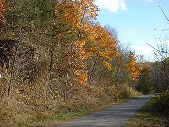 Cannon Valley Trail - Picture of fall colors along the Cannon Valley Trail.