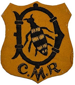 Cape Mounted Riflemen - Image: Cape Mounted Rifles patch badge