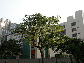 Carmel Holy Word Secondary School.JPG